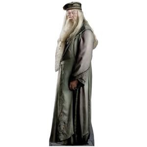 Dumbledore Costume
